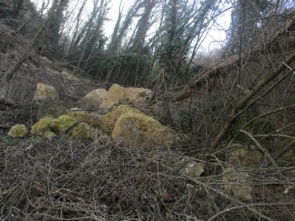These rocks falled down recently it seems